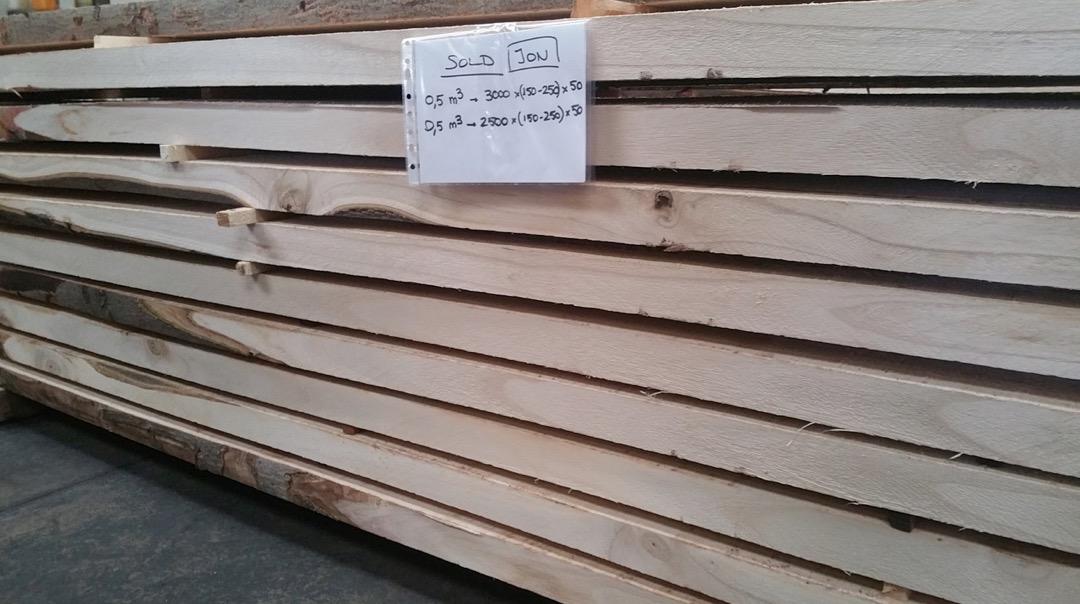 Paulownia timber grown in Spain