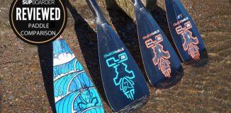 Starboard paddle range