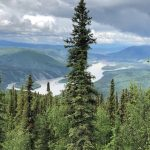 Bart de Zwart - Yukon River Quest 2018