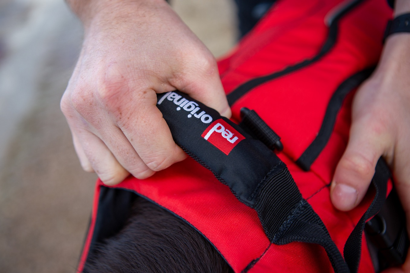 Red Original Dog Buoyancy Aid